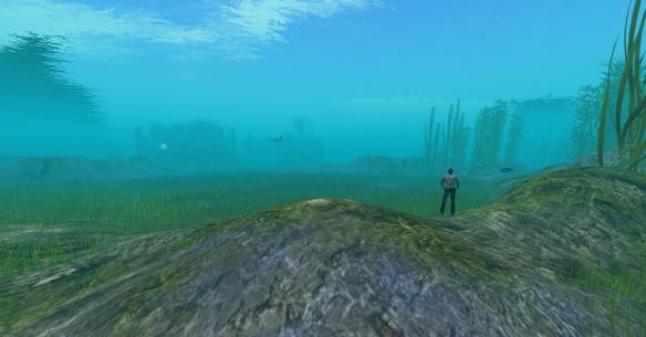Vast underwater area with sea turtles, scuba gear, cuddle & mer dance ball on Sea of Nurnen