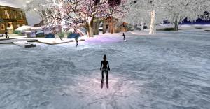 Skating_004