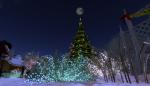 christmas tree lighting_011
