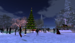 christmas tree lighting_012