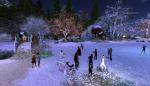 christmas tree lighting_034