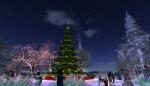 christmas tree lighting_036