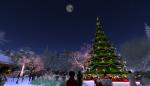christmas tree lighting_037