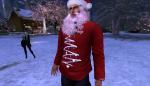 christmas tree lighting_043