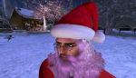 christmas tree lighting_048