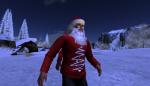 christmas tree lighting_079