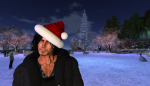 christmas tree lighting_098
