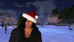 christmas tree lighting_099