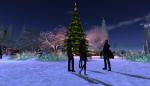 christmas tree lighting_101