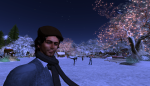christmas tree lighting_120