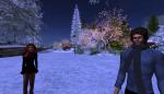 christmas tree lighting_131