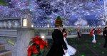 HammerFla Magic Christmas Gala 12 20 2015_198